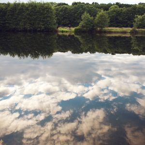 juliet mckee photography - the lake at duncton mill
